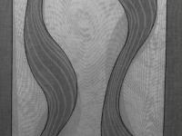 Тюль/портьера с рисунком, Вуаль цвет: Серый